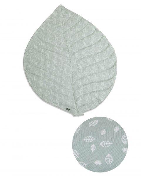 leaf_mildgreen01_hres